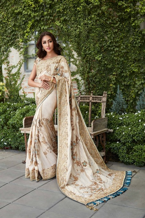 buy-sarees-online-in-india-2306851_960_720